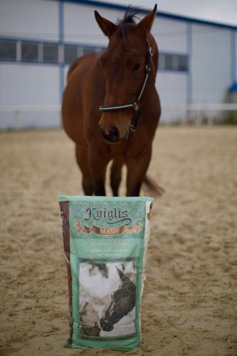 корма для лошадей для спортивных результатов