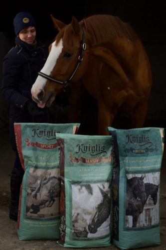 корма для лошадей полезные для здоровья